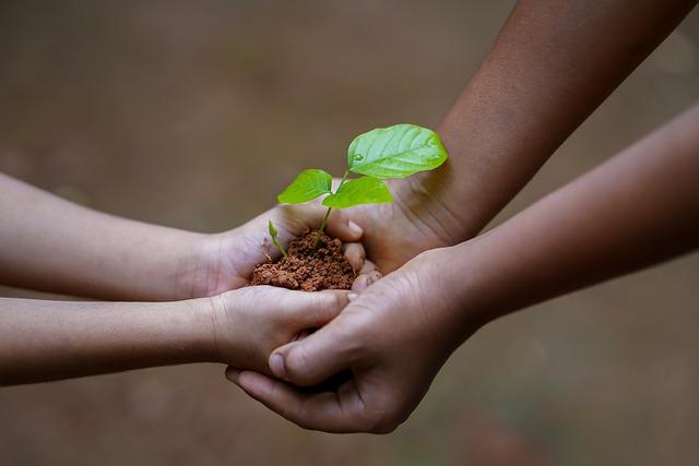 Unconscious Bias – Planting Seeds!